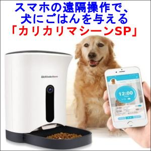 スマホの遠隔操作で、犬にごはんを与える「カリカリマシーンSP」