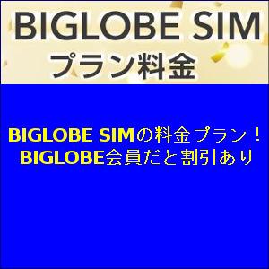 BIGLOBE SIMの料金プラン!BIGLOBE会員だと割引あり