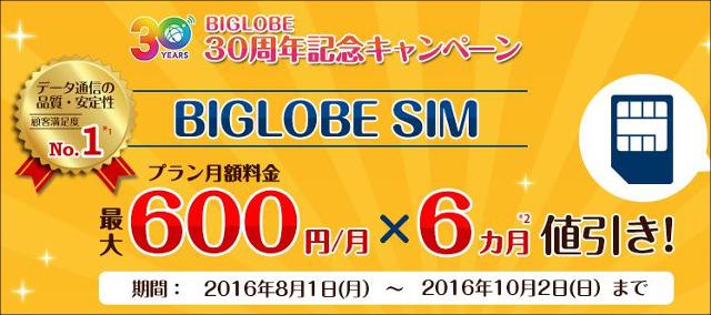 BIGLOBE SIM 2